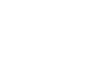 Life of the Party - Intermountain Client Logo
