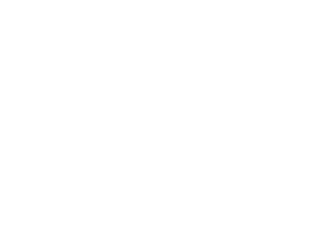 Life of the Party - Rio Tinto Client Logo