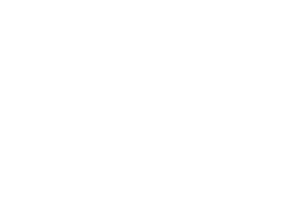 Life of the Party - South Towne Client Logo