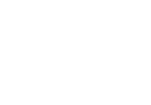Life of the Party - WCF Client Logo